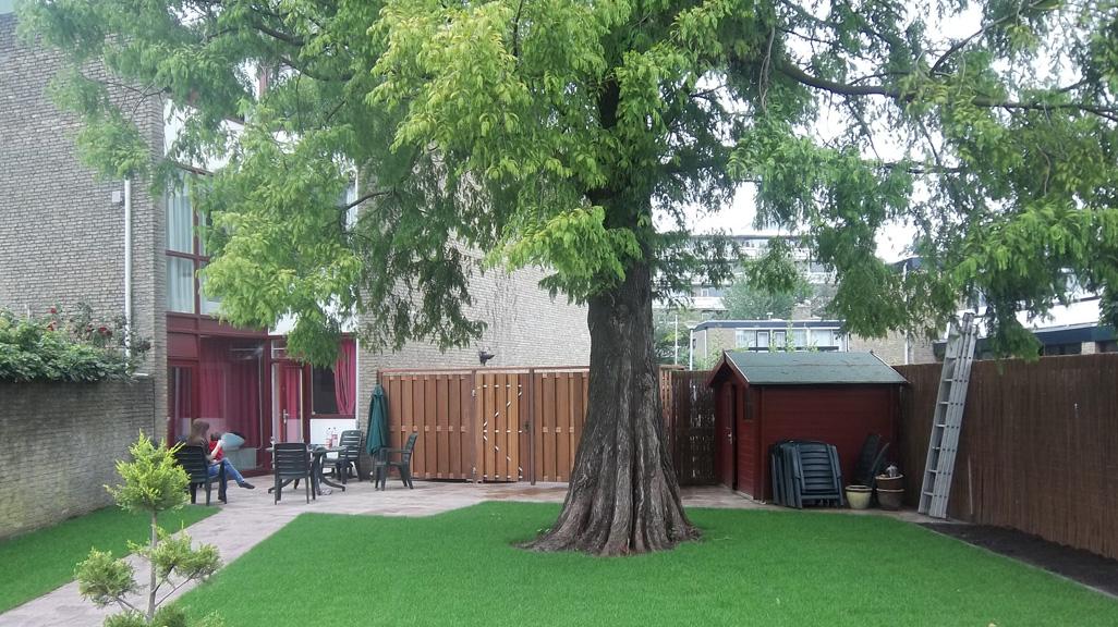 voor-achtertuin-renovatie-6